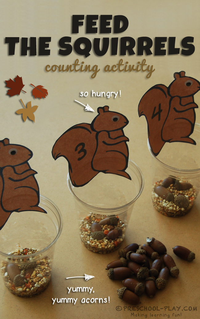feed the squirrels counting activity