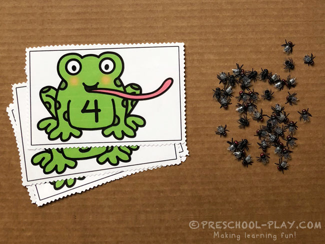 Number Quantity with Flies